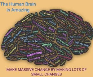 human brain make massive change by making lots of small changes