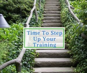 Step Up Your Training